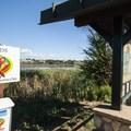 Trailhead at Walden Ponds Wildlife Habitat.- Walden Ponds Wildlife Habitat