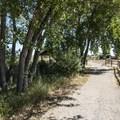 Trail system at Walden Ponds Wildlife Habitat.- Walden Ponds Wildlife Habitat