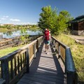 ADA-accessible boardwalk at Wally Toevs Pond, Walden Ponds.- Walden Ponds Wildlife Habitat, Wally Toevs Pond