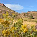 Coffin Top is off limits to protect raptor habitat.- Hall Ranch: Nighthawk Trail