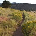 Traversing around the butte.- Hall Ranch: Nighthawk Trail