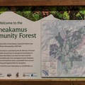 The campground is part of the Cheakamus Community Forest.- Cal-Cheak Recreation Site + Campground