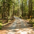Callaghan Loop.- Cal-Cheak Recreation Site + Campground