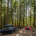 A typical campsite in the Callaghan Loop.- Cal-Cheak Recreation Site + Campground