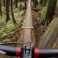 The longest single tree ride on the mountain.- Mount Fromme Trails: 7th Secret, Crinkum/Crankum + Kirkford