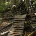 Roller coaster heaven.- Mount Fromme Trails: Ladies Only + Lower Ladies