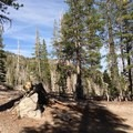 - McLeod Lake Trail