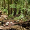 Ladies Only, Fromme Mountain.- Mount Fromme Trails: Ladies Only + Lower Ladies