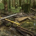 Yes, that's a teeter totter with no roll-around option.- Mount Fromme Trails: Ladies Only + Lower Ladies
