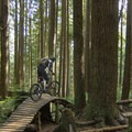 Undulating construction along this amazing trail.- Mount Fromme Trails: Ladies Only + Lower Ladies