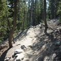 Some elevation gain on the Emerald Lake Trail.- Emerald Lake + Sky Meadow Hike