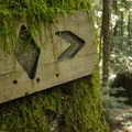 The original trail marker.- Mount Fromme Mountain Bike Trails: Upper Oilcan, Oilcan + Digger