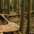 Original old-school tree trails.- Mount Fromme Mountain Bike Trails: Upper Oilcan, Oilcan + Digger