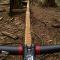 Some of the skinnies are very challenging. - Mount Fromme Mountain Bike Trails: Upper Oilcan, Oilcan + Digger