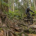 Oilcan runs rough in sections.- Mount Fromme Mountain Bike Trails: Upper Oilcan, Oilcan + Digger
