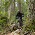 A smoother section of Oilcan.- Mount Fromme Mountain Bike Trails: Upper Oilcan, Oilcan + Digger