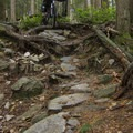 Digger is extremely steep and technical.- Mount Fromme Mountain Bike Trails: Upper Oilcan, Oilcan + Digger