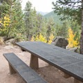 Campsite at Aspen Meadows Campground.- Aspen Meadows Campground