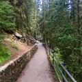 The trail leading to the catwalk through the canyon.- Johnston Canyon Upper Falls Hike