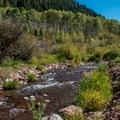 West Brush Creek.- Sylvan Lake State Park