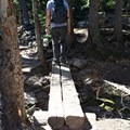 Log bridges on the way to Chasm Lake.- Chasm Lake Hike