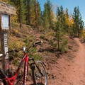 The last climb up the Son of Mill Creek Trail.- Son of Mill Creek Trail Mountain Bike Loop
