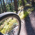 Speed is your friend through the straights.- Son of Mill Creek Trail Mountain Bike Loop