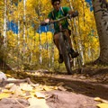 Smooth and tightly packed earth speeds you on the way.- Son of Mill Creek Trail Mountain Bike Loop