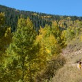 Riding up Red Sandstone Road for the Son of Mill Creek Trail.- Son of Mill Creek Trail Mountain Bike Loop