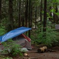 A few sites are at the base of the boulders.- Stawamus Chief Provincial Park + Campground