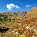 Fall arrives early around the tree line.- Ice Lake + Island Lake Hike