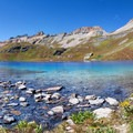 Wildflowers by the blue Ice Lake, and the creek on its way to a waterfall.- Ice Lake + Island Lake Hike