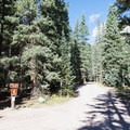 Keep right on the one-way road inside the campground.- South Mineral Campground