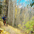 Riding the Wasatch Crest Trail.- Wasatch Crest Mountain Bike Trail