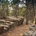 The wilderness here is fantastic.- Sawmill Hikers Campground