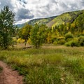 West Brush Creek Trail.- West Brush Creek Trail Hike
