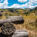 Piece of an old log fence in the meadow.- Hunter Creek Trail