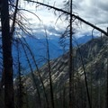 Remnants of recent fires on Purple Pass.- Purple Pass Hiking Loop