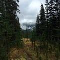 Cloudy trail down to Fish Creek.- Purple Pass Hiking Loop