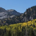 Looking toward the Honeycomb Cliff and Mount Wolverine (10,795 ft).- Scenic Highway 190 to Guardsman's Pass