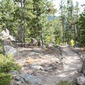 The trails here are beautiful and vast.- Aspen Meadows Campground