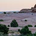 Slickrock for miles.- Sand Flats Recreation Area