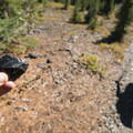 Obsidian along the trail.- Three Sisters Wilderness Westside Hike