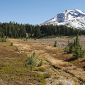 View of South Sister (10,358 ft) from the Pacific Crest Trail.- Three Sisters Wilderness Westside Hike