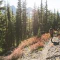En route to Eileen Lake.- Eileen Lake + The Husband Lake Hike