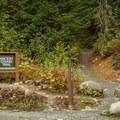 The Ancient Cedars Trailhead.- Ancient Cedars Trail Hike