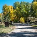 The entire campground is one very short road with a loop to turn around.- Dearhamer Campground