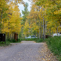 Silver Queen- Maroon Creek Road Campgrounds