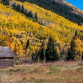 The fall color around Ashcroft is spectacular in late September.- Ashcroft and Castle Creek Road