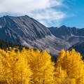 Aspens and Star Mountain.- Ashcroft and Castle Creek Road